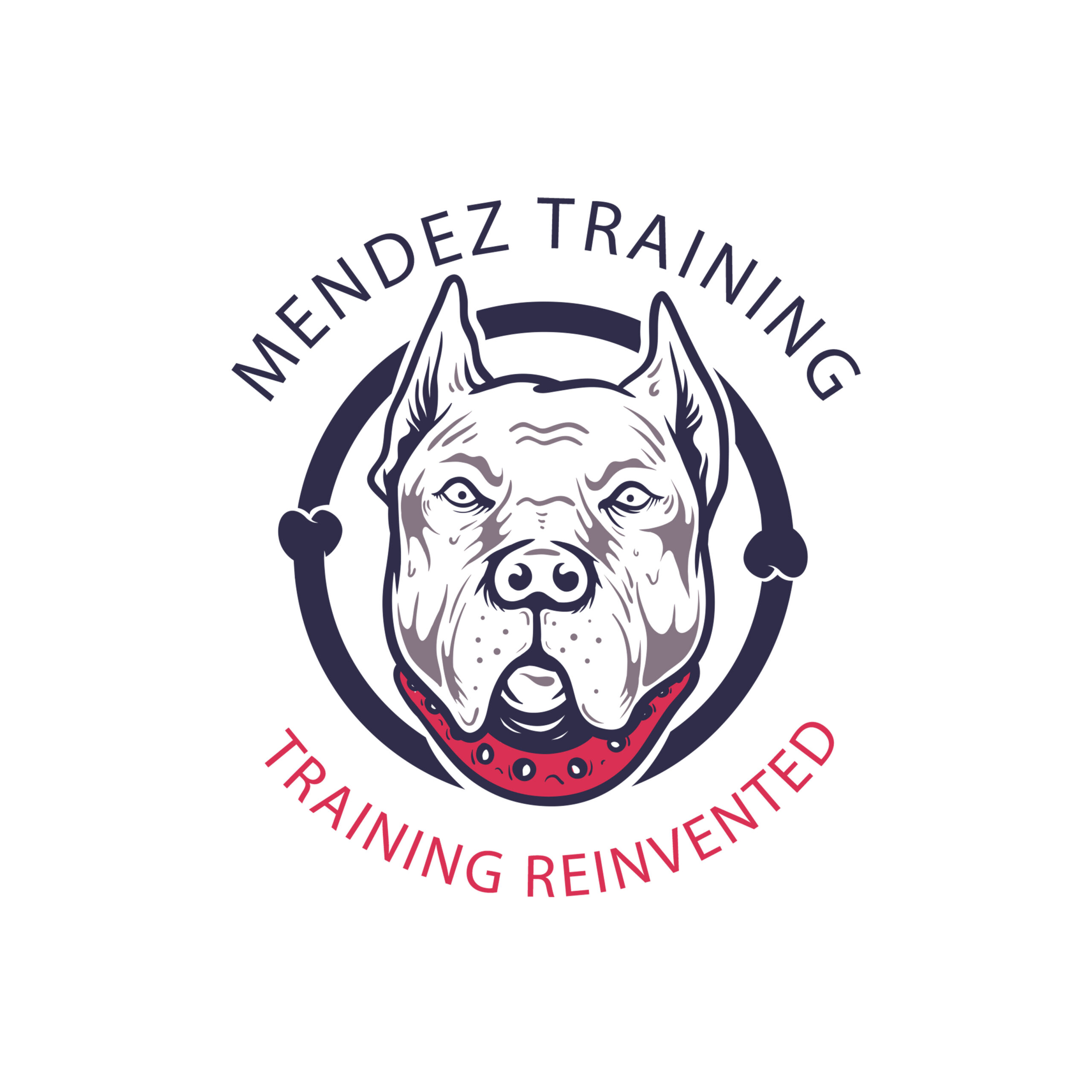MENDEZ TRAINING WEBSITE MASTER